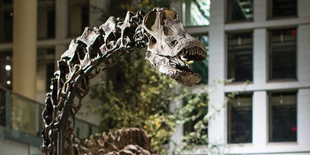 Andrew Carnegie's Dinosaur Diplomacy Continues to Inspire