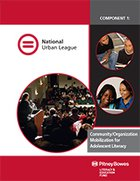 Community/Organization Mobilization for Adolescent Literacy